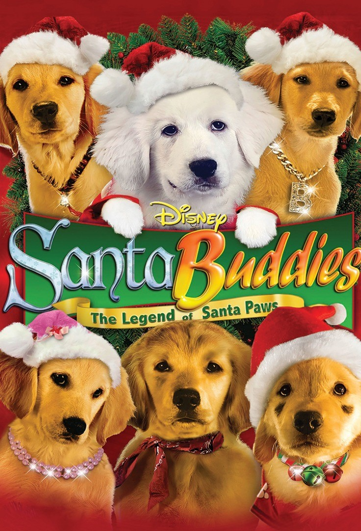 a group of dogs wearing santa hats