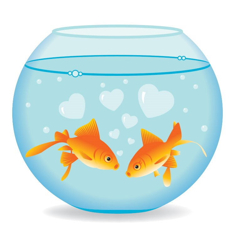 2 red fish in a lantern drawn with illustrator