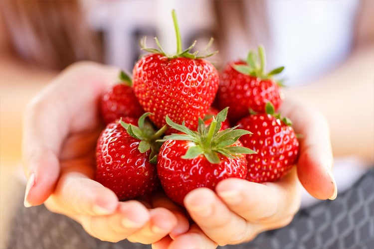 a person holding a bunch of strawberries