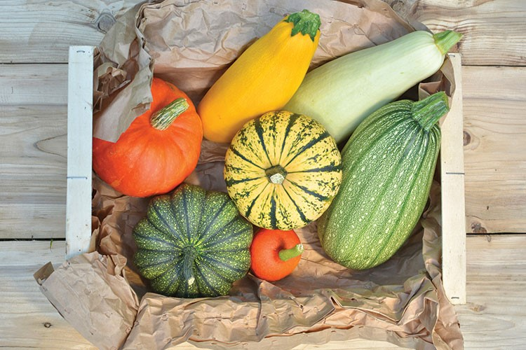 a group of vegetables