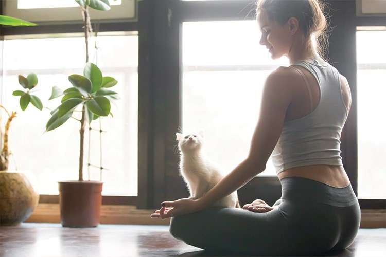 a woman sitting on the floor with a cat
