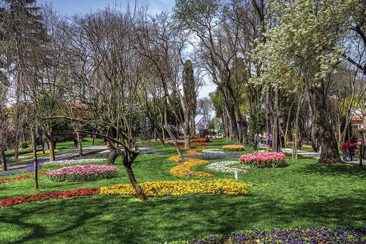 a park with flowers and trees