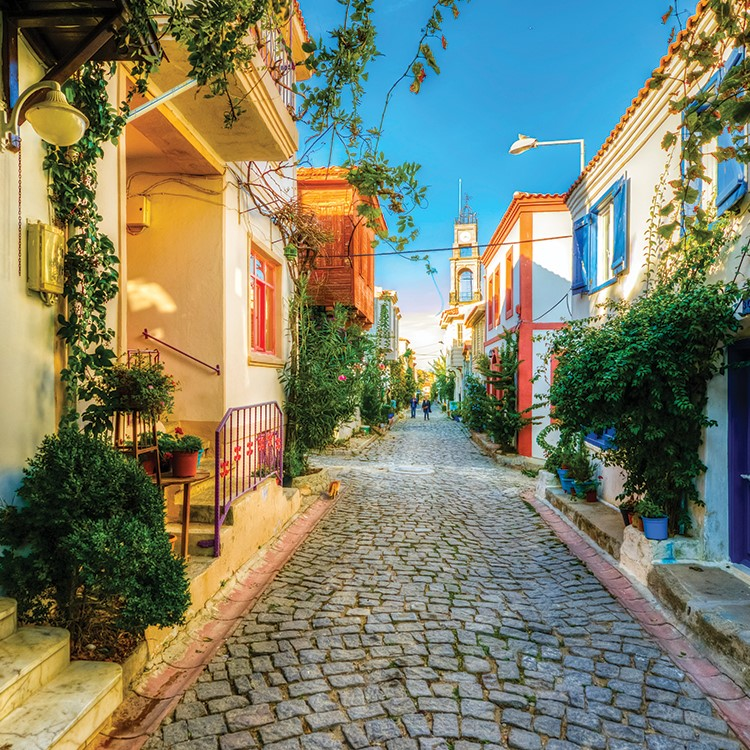 a cobblestone street lined with houses