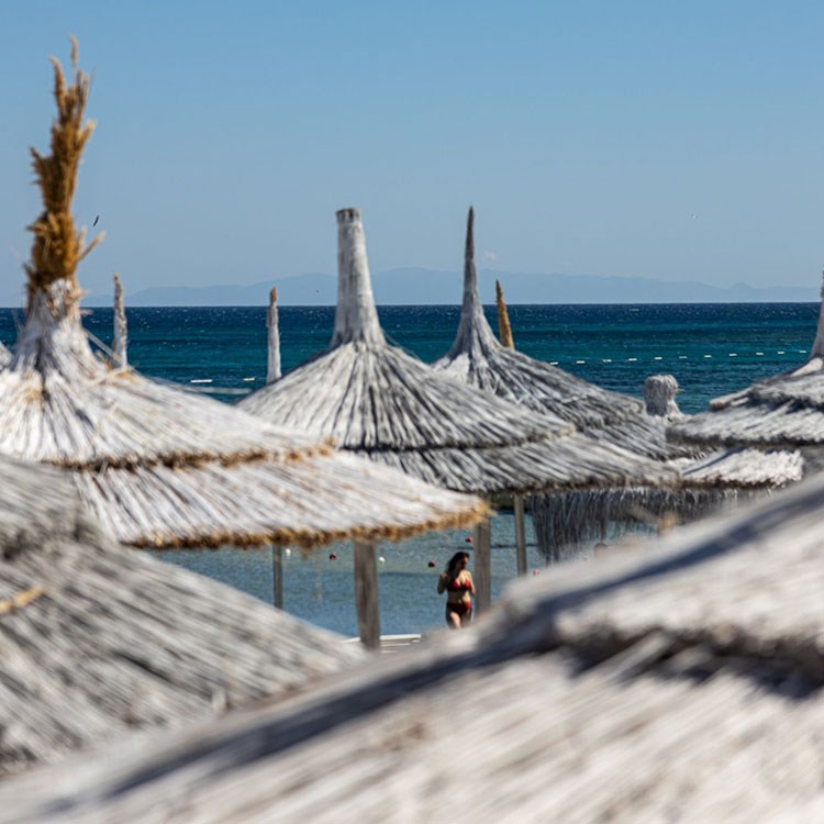 a group of straw huts on a beach