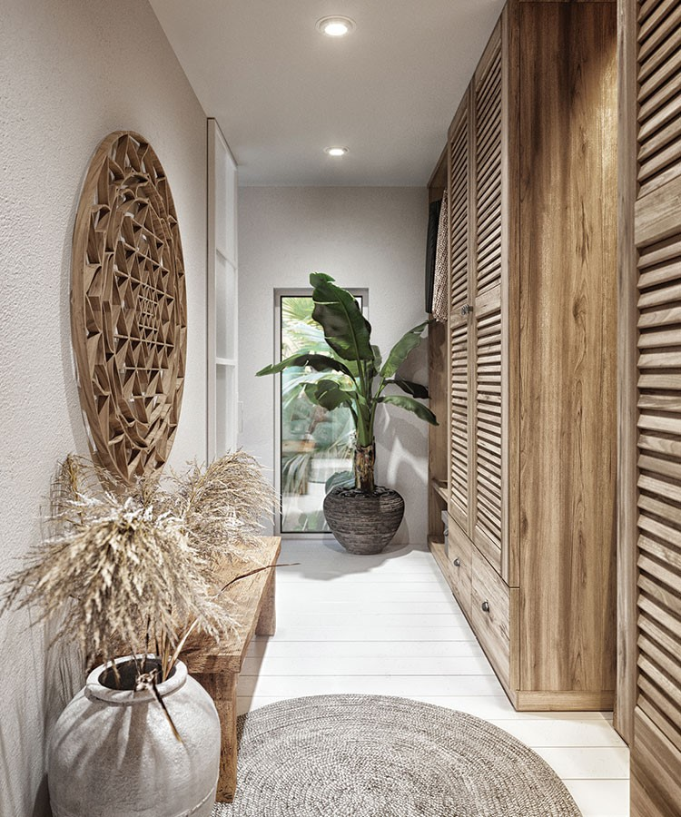 a room with a plant and a rug
