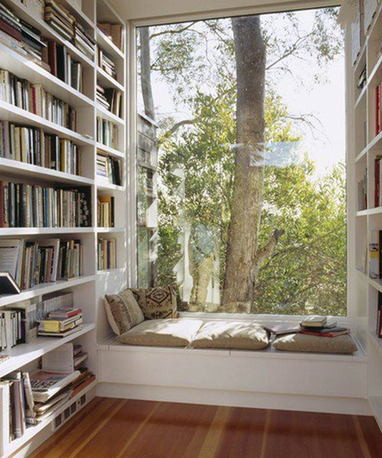 a room with a bookcase and a window with a tree