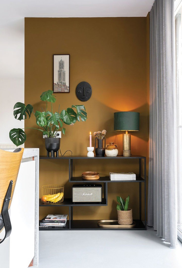 a room with a shelf and a lamp and a plant