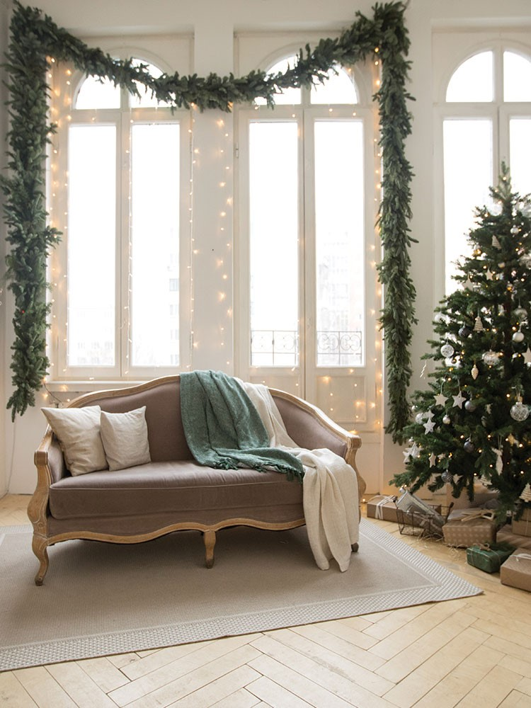 a couch in a room with a tree and a window