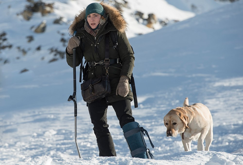 a woman with a dog on a snowy mountain