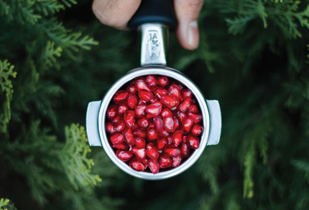 a hand holding a bowl of red berries
