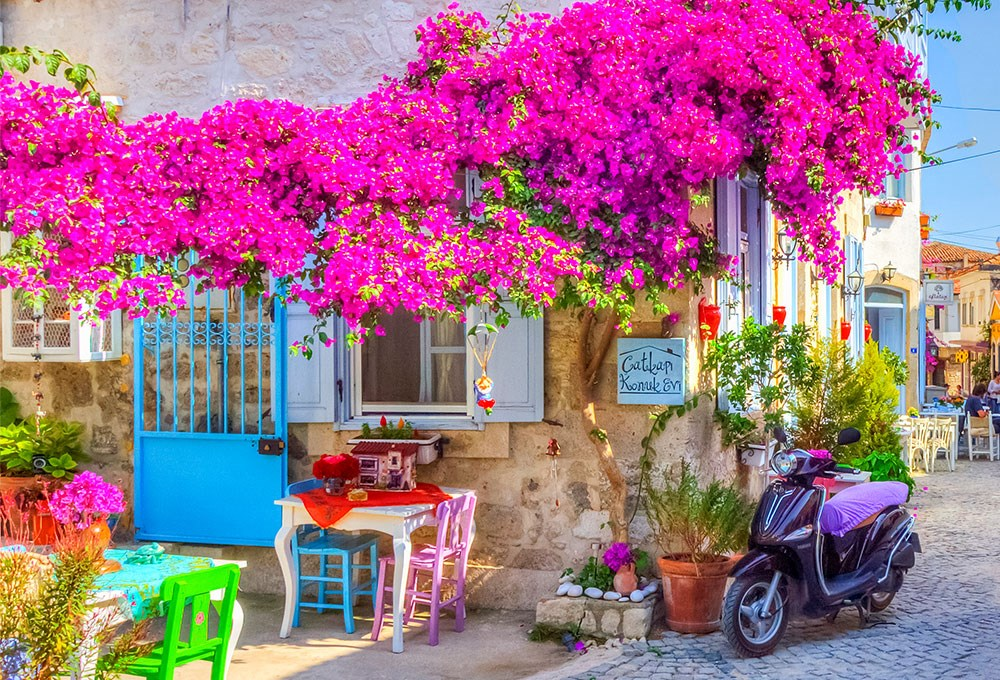 a small cafe with a pink tree