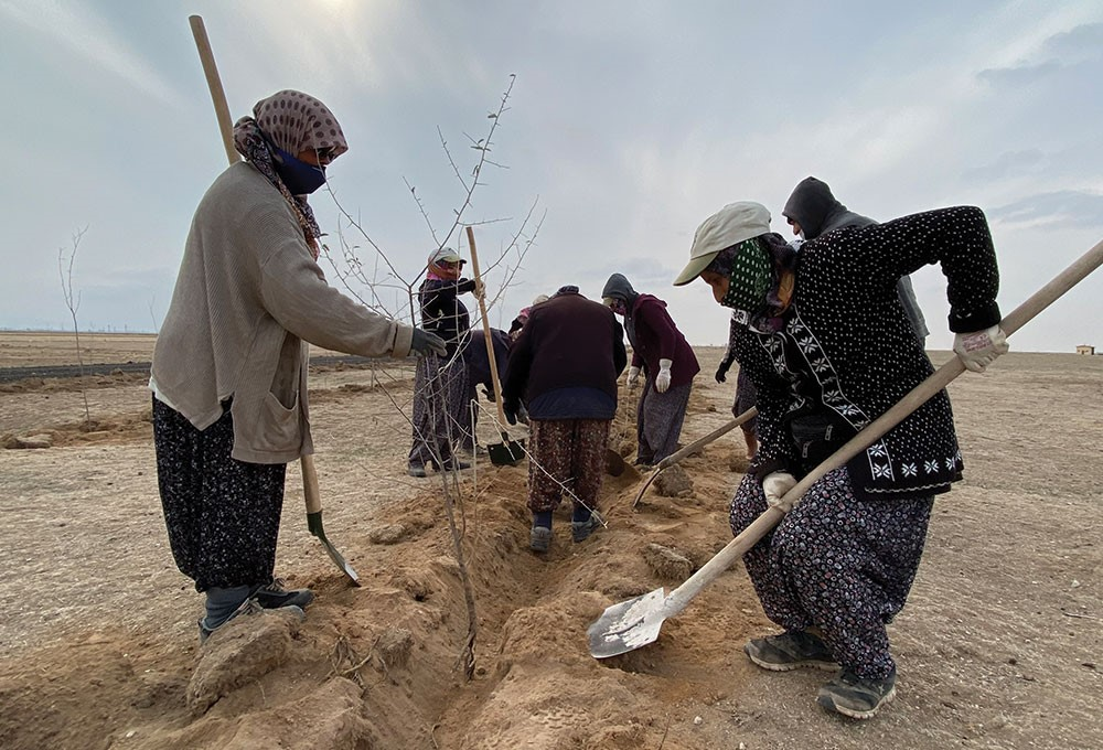 a group of people digging